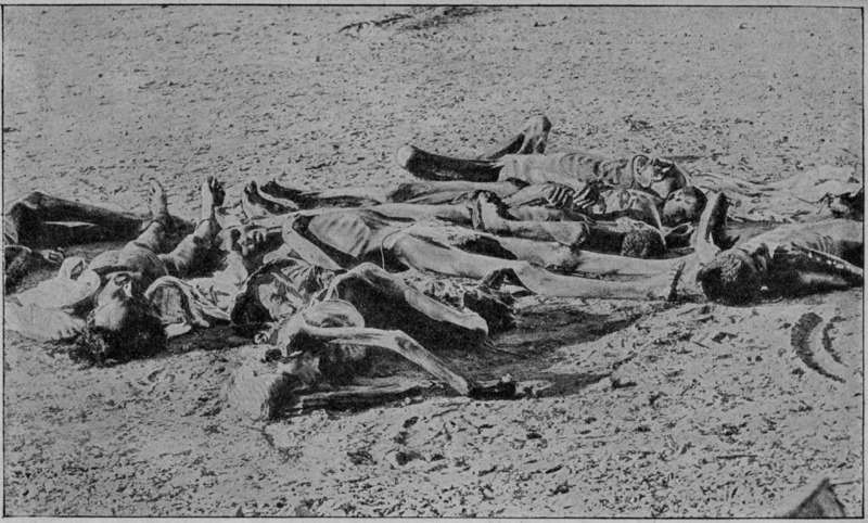 http://jambudveep.files.wordpress.com/2011/01/800px-v-m-_doroshevich-east_and_war-british_india-_corpses_of_famine_victims.png
